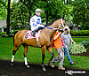 Wardelle before The Dashing Beauty Stakes at Delaware Park racetrack on 6/12/14