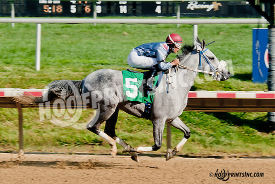 Dhaan winning at Delaware Park on 7/8/13
