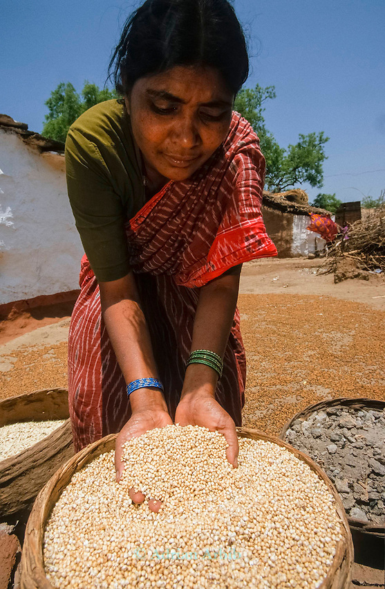 The Deccan development project . In the Deccan region of India, over 60,000 women peasants are feeding their families, their culture and their pride with biodiverse farming practices