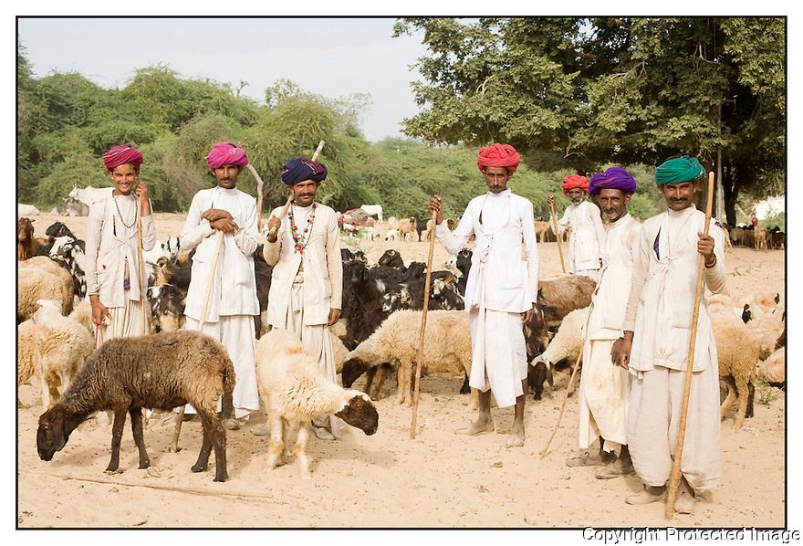 Inde<br /> D&eacute;sert du Rajasthan, groupe de berger.
