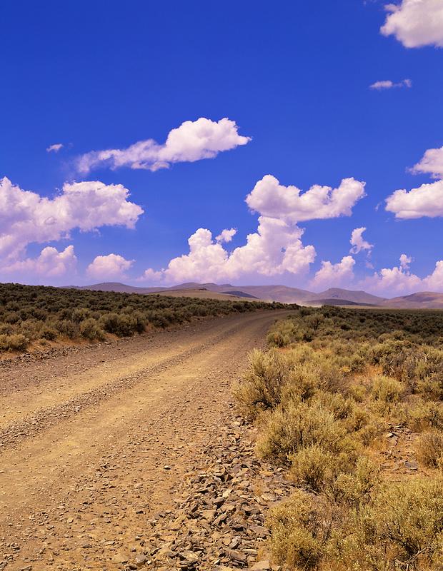 Road in Coyote Hills. Near Plush, Oregon