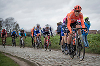 Matteo Trentin (ITA/CCC) up the Oude Kwaremont<br /> <br /> 72nd Kuurne-Brussel-Kuurne 2020 (1.Pro)<br /> Kuurne to Kuurne (BEL): 201km<br /> <br /> ©kramon