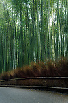 Arashiyama bamboo forest morning scenery in Kyoto, Japan. Image © MaximImages, License at https://www.maximimages.com