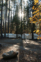 tent cabins in Curry Village are shaded from the morning sun in Yosemite National Park in California November 23, 2008. (Photo Copyright Alan Greth)