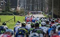 In the finale the peloton is broken up into smaller ones<br /> <br /> 72nd Dwars Door Vlaanderen (1.UWT)<br /> 1day race: Roeselare &rsaquo; Waregem BEL (203.4km)