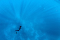freediver suspended in the blue
