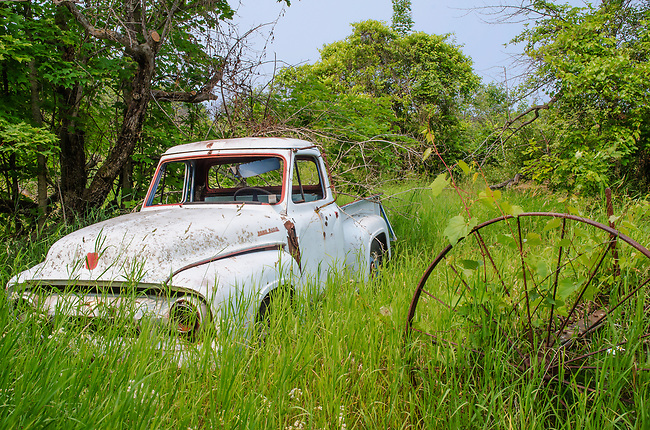 An old Ford truck is being reclaimed bt nature in a meadow along with an old tractor wheel, Ellison Bay, Door County,  Wisconsin