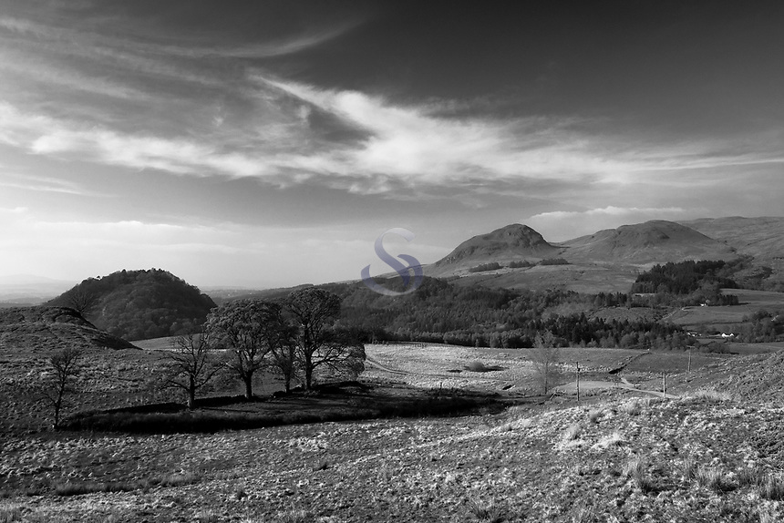 Dumgoyne and the Campsie Fells from the West Highland Way, near Easter Carbeth, Blanefield, Stirlingshire
