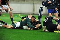 Aphiwe Dyantyi scores his second during the Rugby Championship match between the New Zealand All Blacks and South Africa Springboks at Westpac Stadium in Wellington, New Zealand on Saturday, 15 September 2018. Photo: Mike Moran / lintottphoto.co.nz