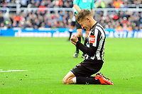 A dejected Dwight Gayle of Newcastle United during Newcastle United vs Manchester United, Premier League Football at St. James' Park on 11th February 2018