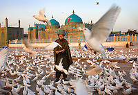 Mazar-E-Sharif, Afghanistan, 2007. Man feeding birds at the Blue Mosque.