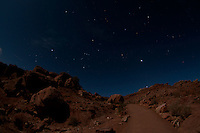 Desert Under Stars, Arches National Park, Utah, US