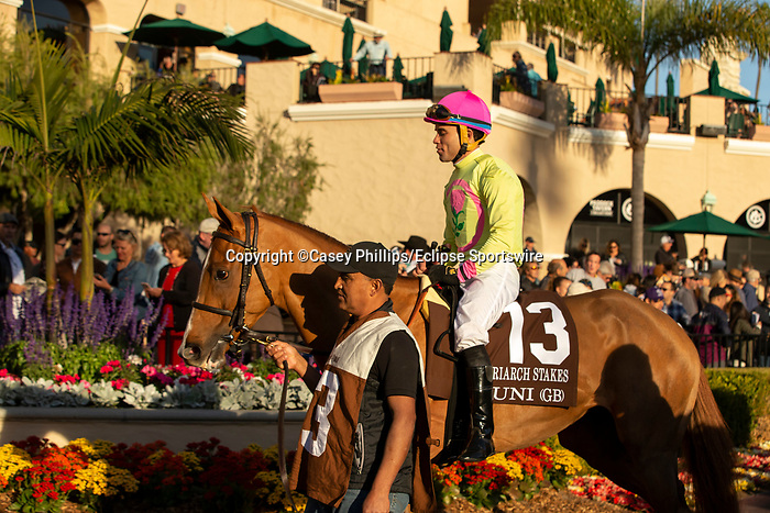 December 2 2018:  #13 Uni, ridden by Joel Rosario heads to the track before the Matriarch Stakes (Grade l), on December 2, 2018, at Del Mar Thoroughbred Club in Del Mar, CA(Photo by Casey Phillips/Eclipse Sportswire/CSM