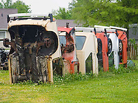 Henry's Ra66it Ranch in Staunton Illinois is a spoof of attractions found along Route 66. The VWs sticking out of the ground resemble Cadillac Ranch in Texas.