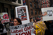 March Against Monsanto 2016 New York