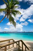 Honeymoon Beach post hurricanes<br /> Virgin Islands National Park<br /> St. John<br /> US Virgin Islands