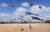 Nederland  Scheveningen. September 2018. Vliegerfestival op het strand.    Foto Berlinda van Dam / Hollandse Hoogte