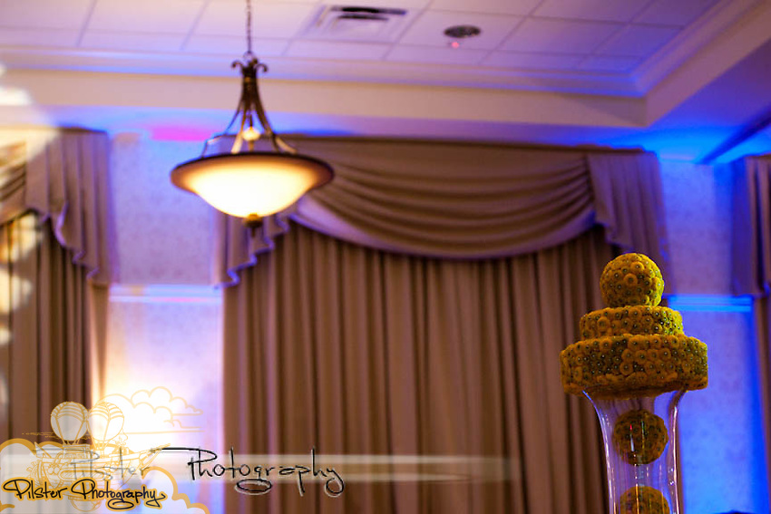 Thursday, September 2, 2010 during the Bridal Ball at the Lake Mary Events Center in Lake Mary, Florida.  The Bridal Ball was produced by RW Events, PlanIT Boutique and Pilster Photography.(Chad Pilster, PilsterPhotography.net)