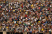 Rio de Janeiro, Brazil. Carnival; audience on the stands of the sambadrome (sambodromo).
