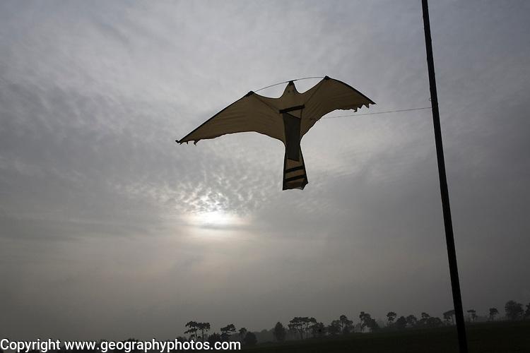Bird of prey shaped kite bird scarer flying in breeze over farm field, Suffolk, England