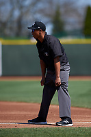 Umpire Thomas Burrell during a Midwest League game between the Wisconsin Timber Rattlers and Great Lakes Loons at Dow Diamond on May 4, 2019 in Midland, Michigan. Great Lakes defeated Wisconsin 5-1. (Zachary Lucy/Four Seam Images)