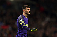 Hugo Lloris of Tottenham Hotspur during Tottenham Hotspur vs Manchester United, Premier League Football at Wembley Stadium on 13th January 2019