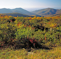 A scenic landscape of the Blue Ridge Mountains in Shenandoah National Park. Luray, Virginia.