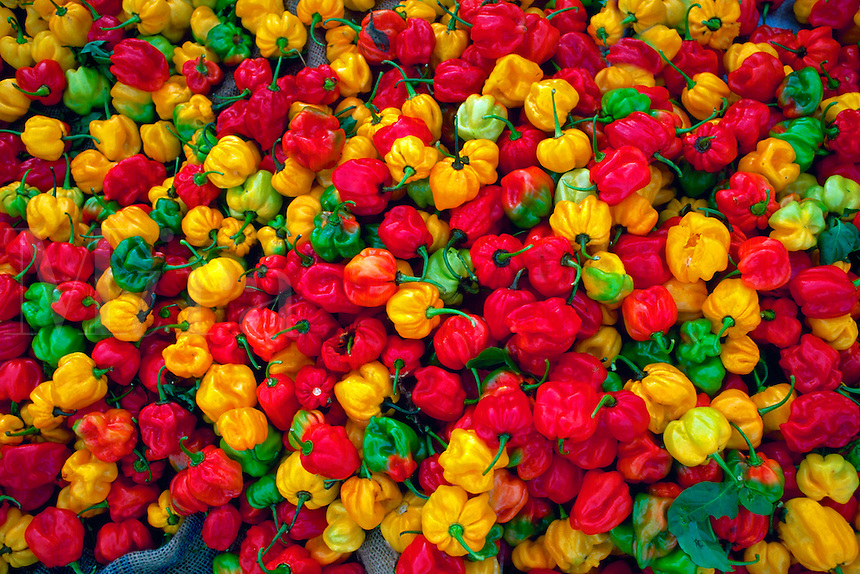 Habanero (Congo or Scotch Bonnett) peppers in Central Market, Port of Spain
