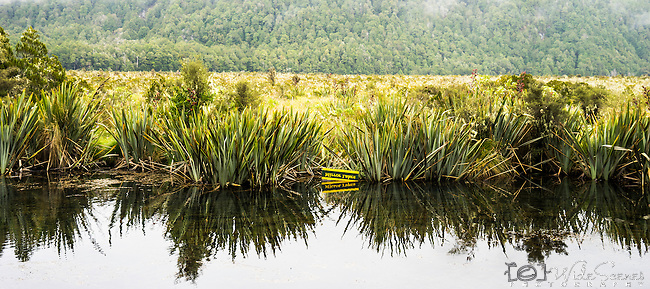 Mirror Lakes are a set of lakes In Fiordland National Park between Te Anau and Milford Sound in New Zealand.