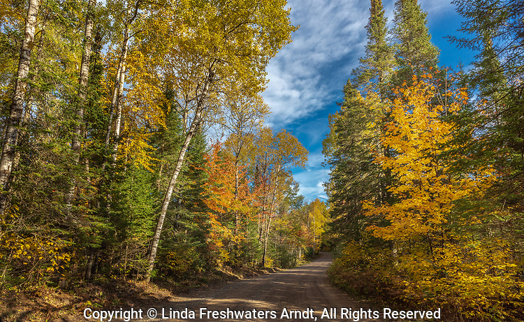 A pretty fall day in the Chequamegon National Forest.