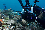 Young Kuah underwater photographer photographing the reef close up.
