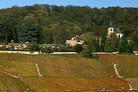 Europe/France/Champagne-Ardenne/51/Marne/Hautvillers: L'église Abbatiale et le vignoble Champenois de la Vallée de la Marne