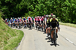 Finally some sunshine for the peloton during Stage 6 of the Criterium du Dauphine 2019, running 229km from Saint-Vulbas - Plaine de l'Ain to Saint-Michel-de-Maurienne, France. 14th June 2019.<br /> Picture: ASO/Alex Broadway | Cyclefile<br /> All photos usage must carry mandatory copyright credit (© Cyclefile | ASO/Alex Broadway)