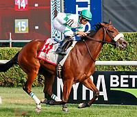 08-24-17 Riskaverse Stakes (Saratoga)