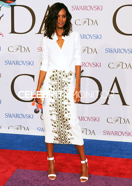 NEW YORK CITY, NY, USA - JUNE 02: Liya Kebede arrives at the 2014 CFDA Fashion Awards held at Alice Tully Hall, Lincoln Center on June 2, 2014 in New York City, New York, United States. (Photo by Celebrity Monitor)