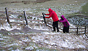 2015_01_28_mam_tor_windy_snow