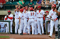 Greeneville Reds first baseman Rylan Thomas (37) is congratulated by his teammates as he returns to the dugout after hitting a home run in the bottom of the fourth inning during a game against the Pulaski Yankees on July 27, 2018 at Pioneer Park in Tusculum, Tennessee.  Greeneville defeated Pulaski 3-2.  (Mike Janes/Four Seam Images)