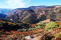 vineyards view to sao cristovao do douro and pinhao quinta do noval douro portugal