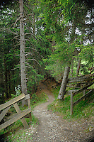 Entrance to walkway in the forest, Imst district, Tyrol, Tirol, Austria.