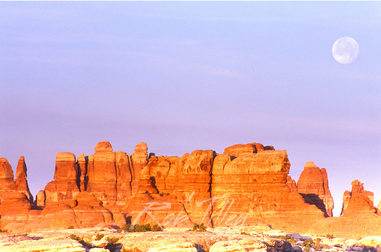 USA, Utah, Canyonlands NP, Full Moon Over The Needles
