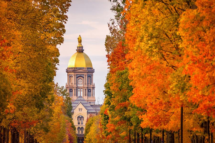 November 2, 2018; Notre Dame Avenue (Photo by Matt Cashore)