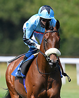 Round Six ridden by David Probert goes down to the start of The AJN Steelstock Kentford British EBF Novice Stakes    during Horse Racing at Salisbury Racecourse on 9th August 2020