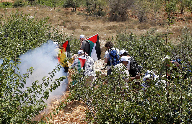 Palestinian and foreign activists run for cover from tear gas canister fired by Israeli soldiers during a demonstration in Beit Omar village, north of Hebron, on July 10, 2010 against Israel's controversial separation barrier and the expansion of nearby Jewish settlements in the occupied West Bank. Photo by Mamoun Wazwaz