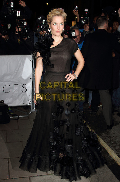 LONDON, ENGLAND - NOVEMBER 05: Gillian Anderson  attends the Harper's Bazaar Women of the Year Awards 2013, Claridge's Hotel on November 05, 2013 in London, England, UK.<br /> CAP/ROS<br /> &copy;Steve Ross/Capital Pictures