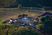 Pocos de Caldas _ MG, Brasil..Casas proximas a uma plantacao de eucalipto em Pocos de Caldas...The houses next to the eucalyptus...Foto: JOAO MARCOS ROSA /  NITRO