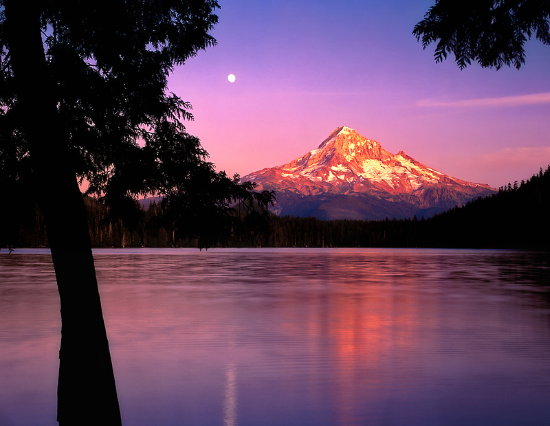 Lost Lake and Mount Hood with moonrise. Oregon