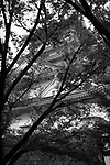 Artistic dramatic black and white abstract scenery of Osaka Castle, Osakajo, view through tree branches and leaves. Osaka, Japan 2017