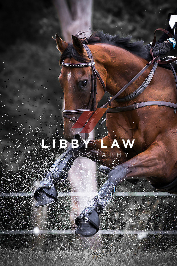 NZL-Pauline Rixon (RALPH) 3B NZPC 80: 2015 NZL-Hunua Pony Club ODE (Sunday 1 February) CREDIT: Libby Law COPYRIGHT: LIBBY LAW PHOTOGRAPHY