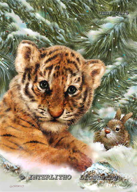 GIORDANO, CHRISTMAS ANIMALS, WEIHNACHTEN TIERE, NAVIDAD ANIMALES, paintings+++++,USGI2629,#XA# tigers