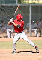 Roberto Lopez / Los Angeles Angels 2008 Instructional League..Photo by:  Bill Mitchell/Four Seam Images